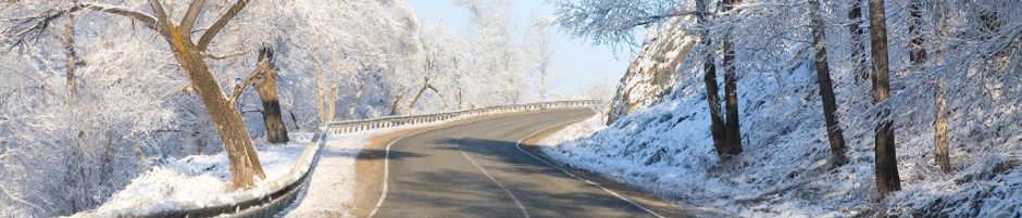 Auto Motor Sport Winterreifentest 2014