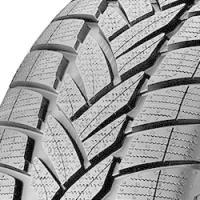 Pneumatico Dunlop Grandtrek WT M3 (265/55 R19 109H)